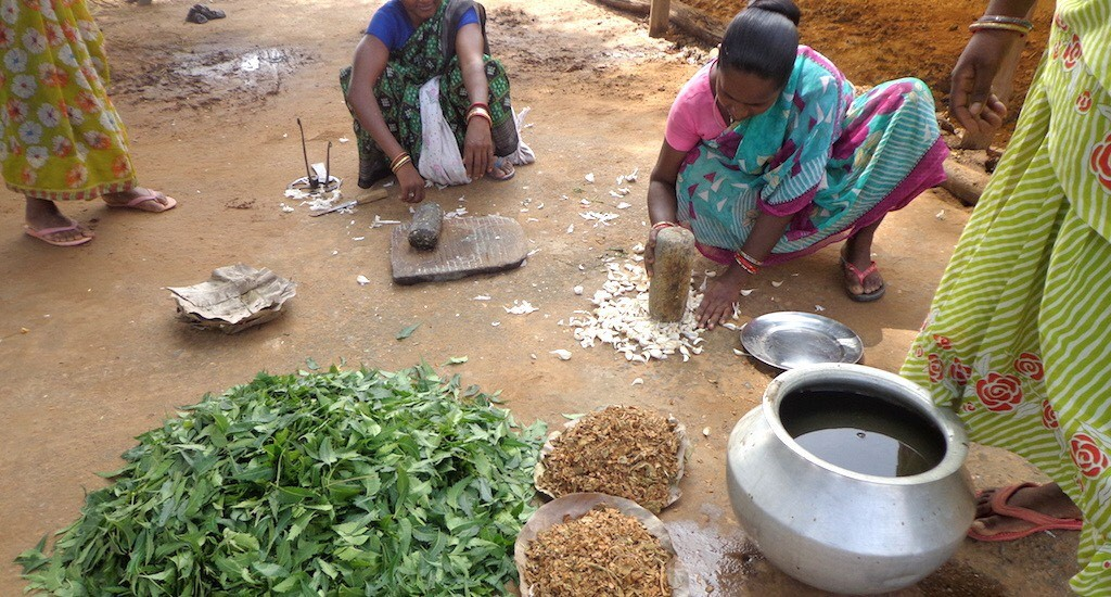 Women preparing homemade pesticides in India_Photo credit Basudev Mahapatra