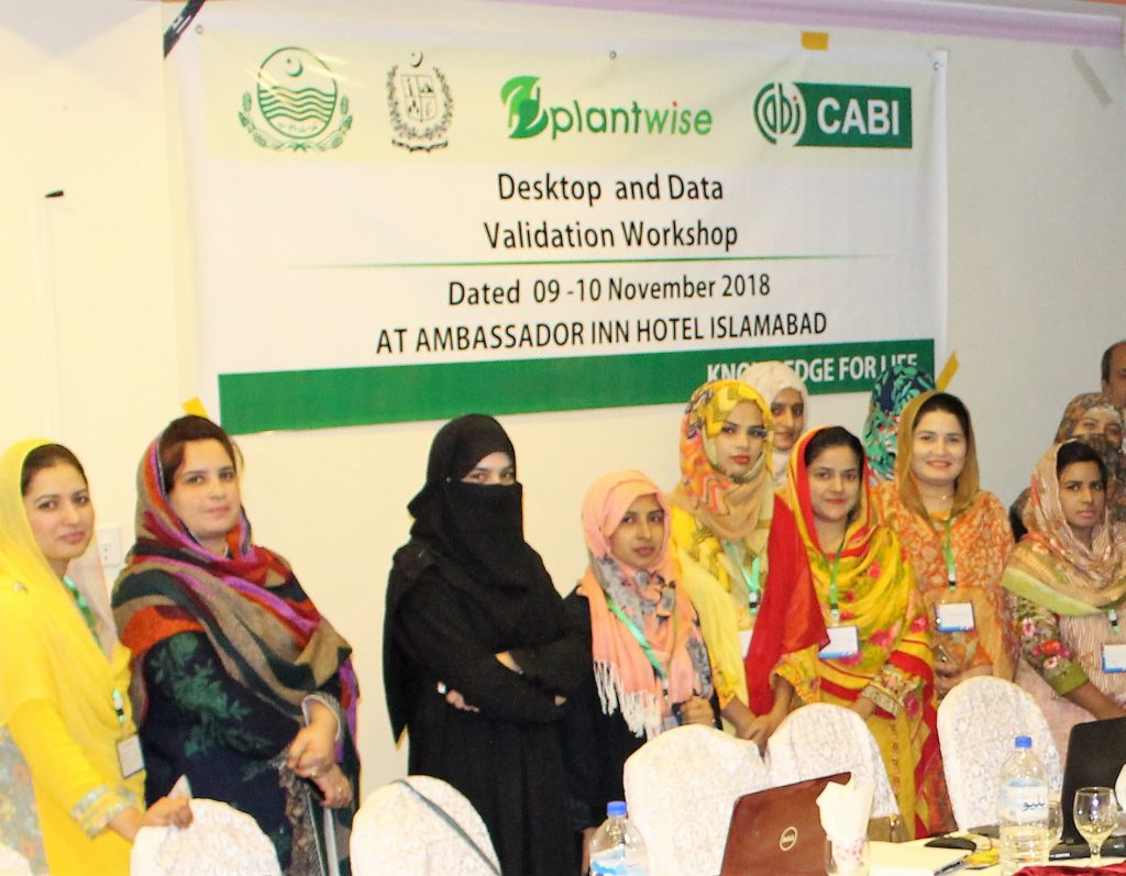 Women attend a plantwise workshop on data management