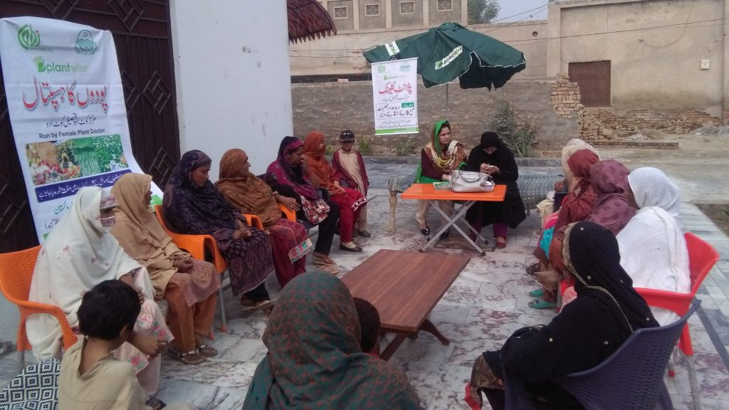 A women-only plant clinic in Pakistan; a group of women gather round extension workers