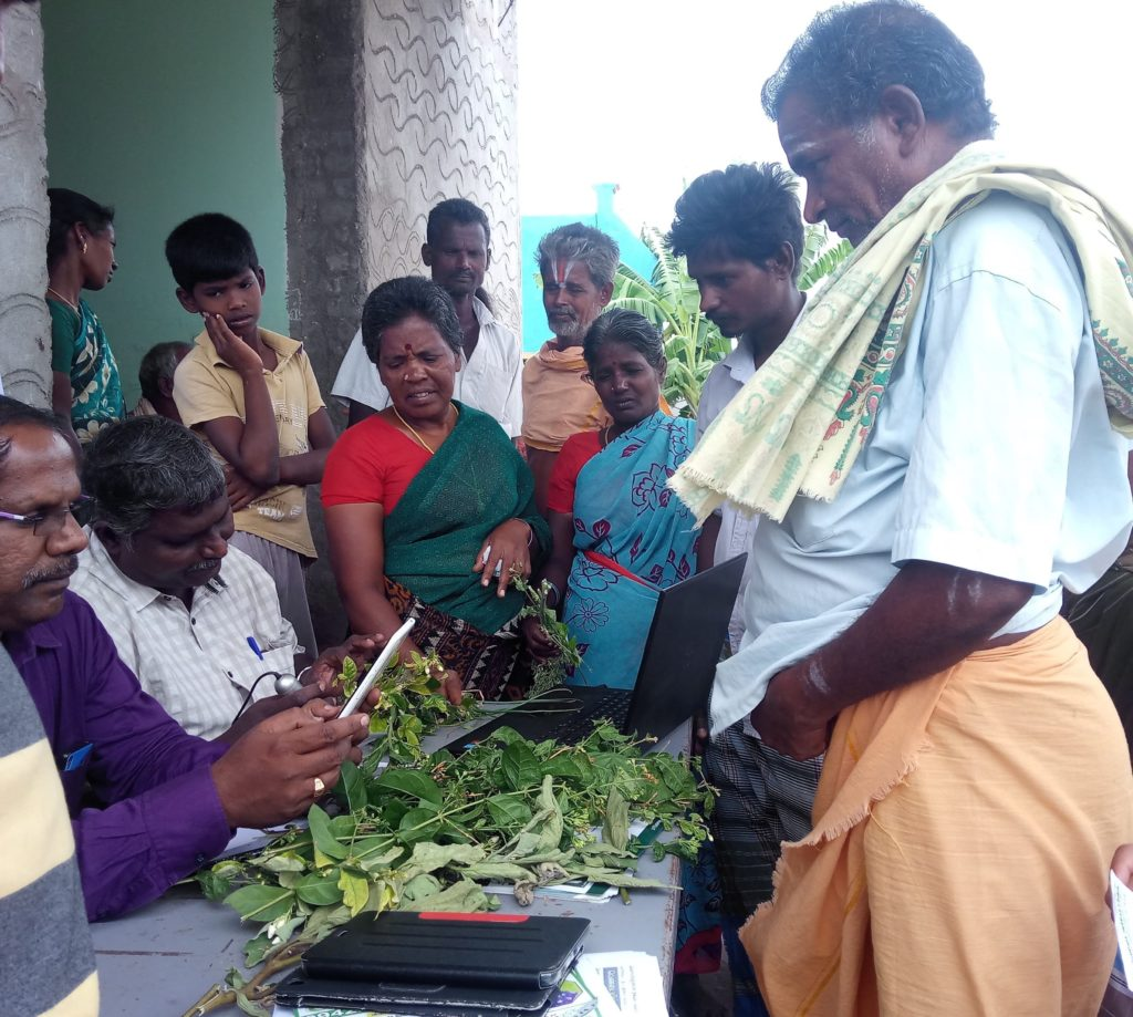 Farmers at a plant clinic in India