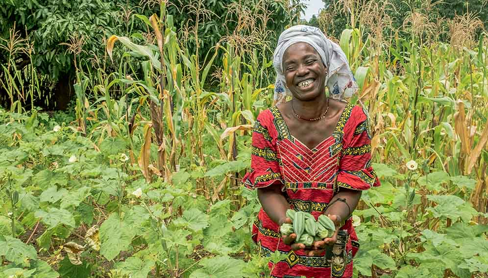 Microloans Make Farming Profitable For Kenyan Smallholders The Plantwise Blog