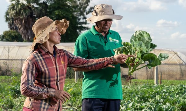 A farmer and a plant doctor discuss crop health problems in the field