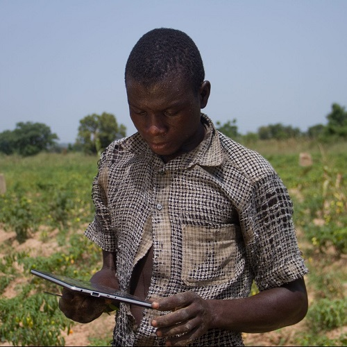 A farmer using a tablet device