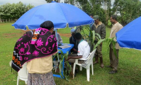 Ethiopia plant clinic