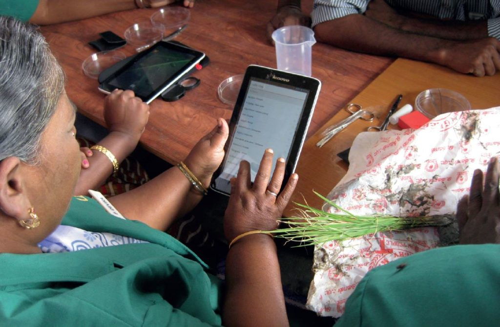 Principles of digital development
