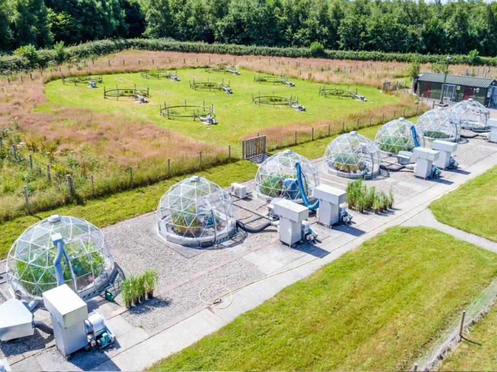 Ozone pollution: Ozone domes